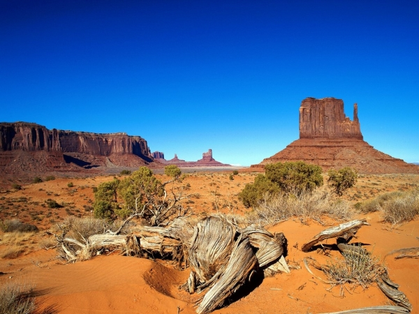 west_mitten__monument_valley__arizona