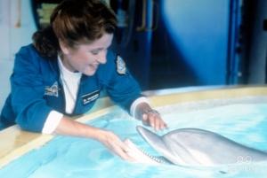 Beacham with Darwin the Dolphin.