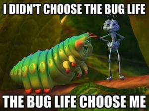 np_bug_1