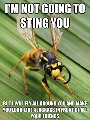 np_bug_6